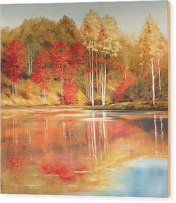 Brook's Pond Wood Print by Diana  Tyson
