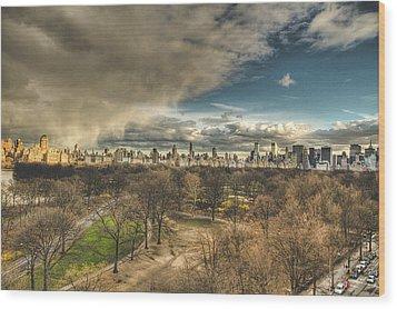 Central Park Springtime Wood Print by Ariane Moshayedi