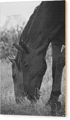 Das Pferde Wood Print by Edward Myers