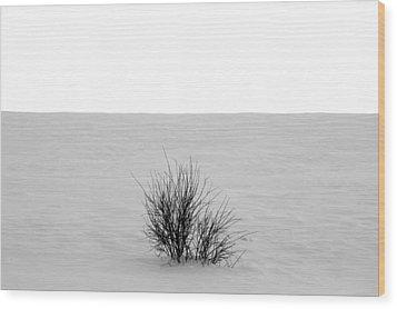 Deep Breath Wood Print by Jerry Cordeiro