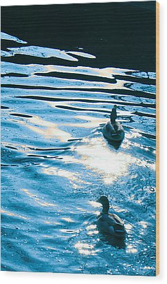 Ducks At Twilight Wood Print by Ginny Gaura