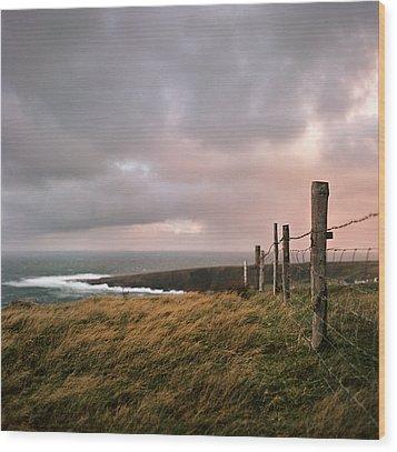 Fence In Ireland Wood Print by Danielle D. Hughson