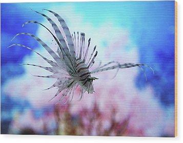 Fish In Aquarium Wood Print by Love design, Love City, Love Life