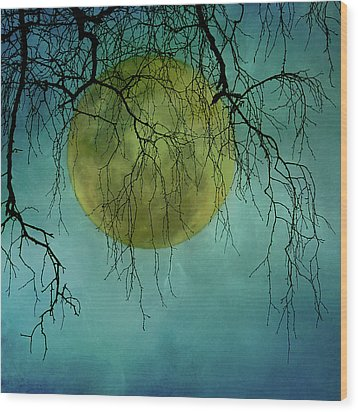 Full Moon Wood Print by Jill Ferry