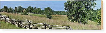 Going To Appomattox Court House Wood Print by Teresa Mucha