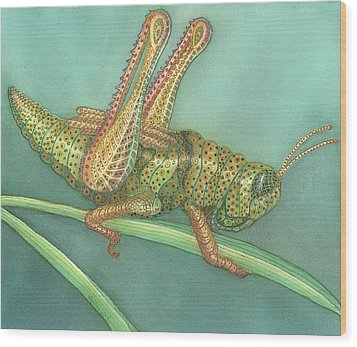 Grasshopper Wood Print by Anne Havard