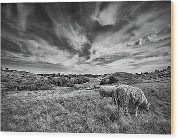 Wood Print featuring the photograph Heather Hills I by Stefan Nielsen