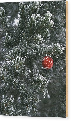 Holiday Ornament Hanging On Snow Dusted Wood Print by Kate Thompson