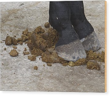 Horse Manure Wood Print by Bruce Ritchie