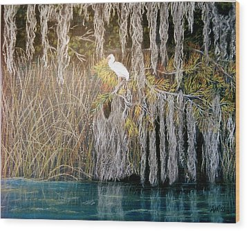 Wood Print featuring the pastel Ibis At Wakulla Springs by Jan Amiss