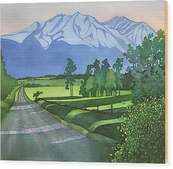 Into The Valley Wood Print by Anne Havard
