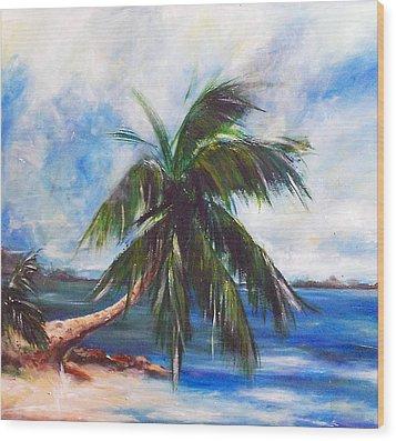 Island Iv Wood Print by Amy Williams