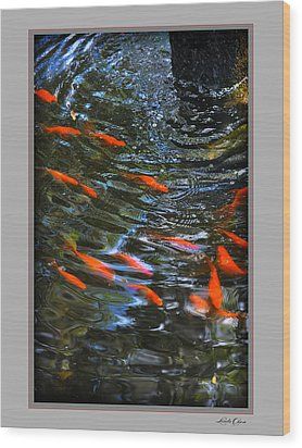 Wood Print featuring the photograph Koi Swirl by Linda Olsen