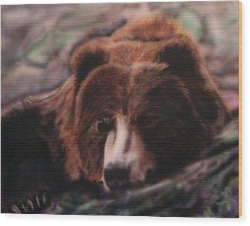 Let Sleeping Bears Lie Wood Print by Frank  Bingo
