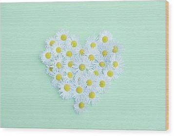 Little Daisy Wood Print by Poppy Thomas-Hill