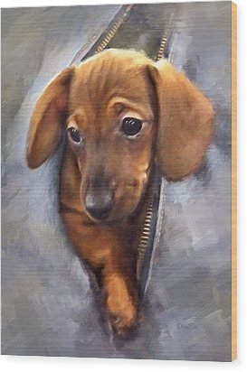 Miniature Dachshund Wood Print by   DonaRose