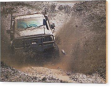 Mud Slinger Wood Print