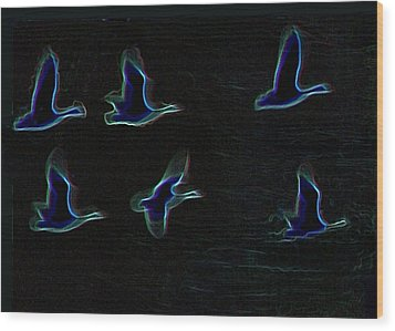 Night Flight 2 Wood Print