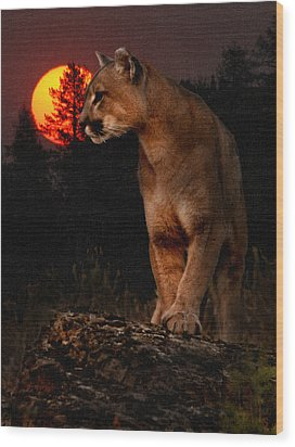 Night Of The Cougar Wood Print by Wade Aiken