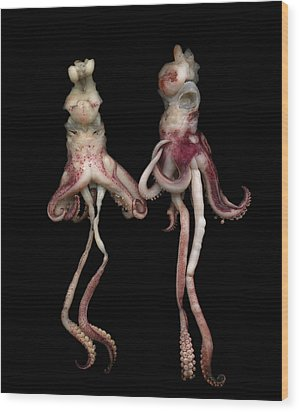 Octopus Wood Print by Photograph by Magda Indigo