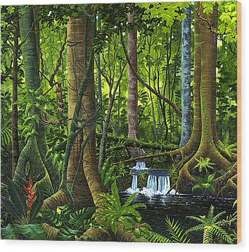Osa Peninsula Rainforest Wood Print