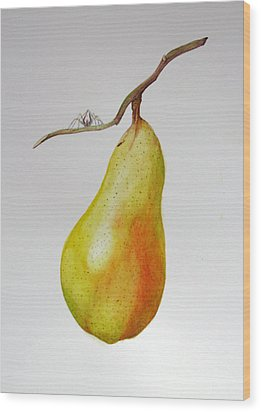 Wood Print featuring the painting Pear With Spider by Margit Sampogna