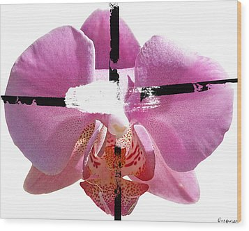 Pink Cowboy Hat Crucio Wood Print by Geronimo