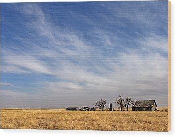 Prarie House Wood Print by Peter Tellone