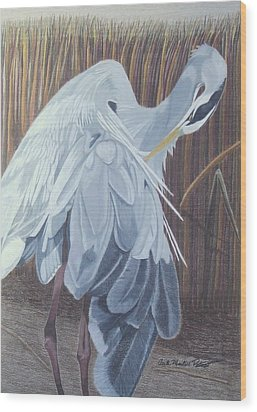 Preening Wood Print by Anita Putman