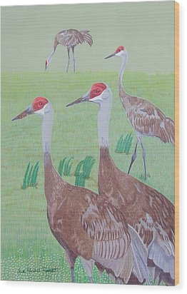 Red Heads Wood Print by Anita Putman