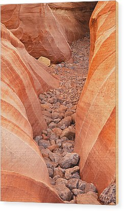 Rocky Trail Wood Print by James Marvin Phelps