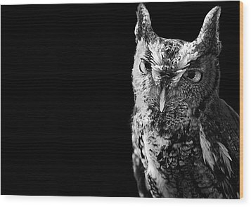 Screech Owl Wood Print by Malcolm MacGregor