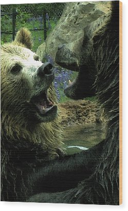 Wood Print featuring the digital art Silly Bears by Holly Ethan