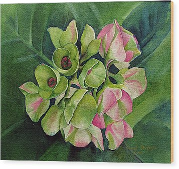 Wood Print featuring the painting Summer Beauty by Margit Sampogna