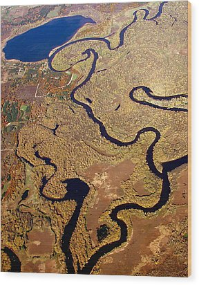 Wood Print featuring the photograph T-002 Twisted Wolf River by Bill Lang