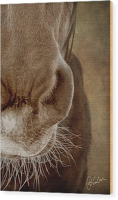 The Soft Spot II Wood Print by Christine Hauber