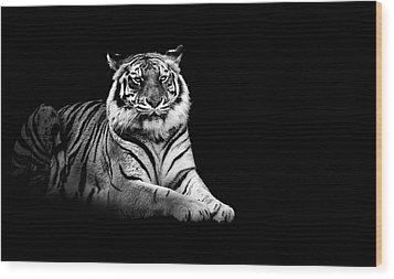 Tiger Wood Print by Malcolm MacGregor