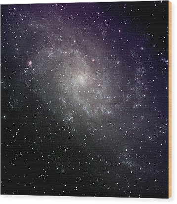 Triangulum Galaxy Wood Print by A. V. Ley