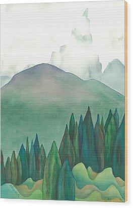Wet Waterton Wood Print by Anne Havard