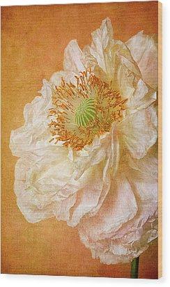 White Double Poppy Wood Print by © Leslie Nicole Photographic Art