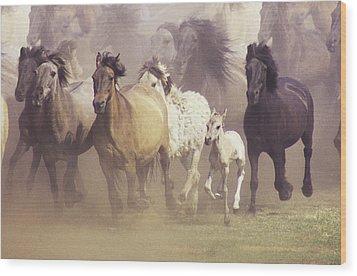 Wild Horses Running Wood Print by John Foxx
