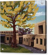 A Tree Grows In The Courtyard, Palace Of The Governors, Santa Fe, Nm Acrylic Print by Erin Fickert-Rowland