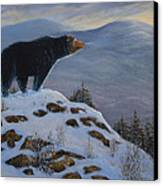 Last Look Black Bear Canvas Print