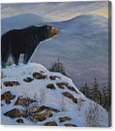 Last Look Black Bear Canvas Print