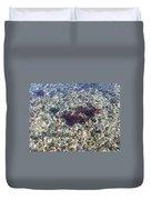 Narraganset Bay 3 Duvet Cover