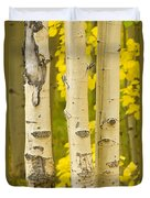 Three Autumn Aspens Duvet Cover by James BO  Insogna