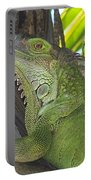 Iguana Puerto Rico Portable Battery Charger