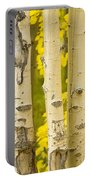 Three Autumn Aspens Portable Battery Charger by James BO  Insogna
