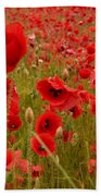 Red Poppies 4 Beach Towel