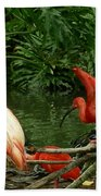 Flamingo And Scarlet Ibis Beach Sheet